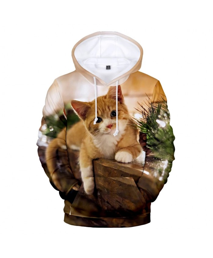 popular 3D Christmas fashion animal Cat men and women hoodies spring autumn casual pullovers Harajuku sweatshirts