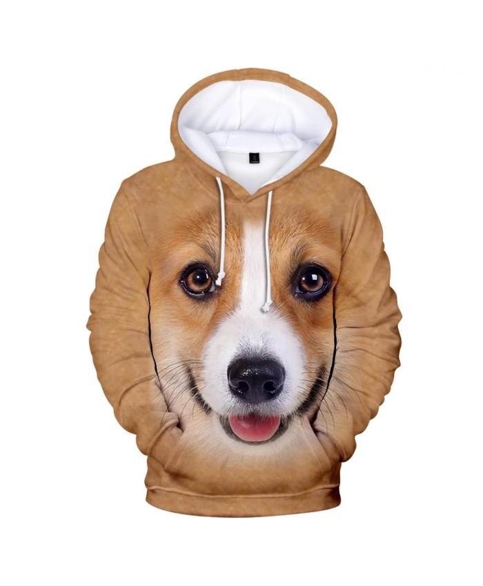 Casual print animal dog 3D Hoodies Men Women Sweatshirts Harajuku Hoodie Autumn 3D animal dog New Hot boys girls pullovers