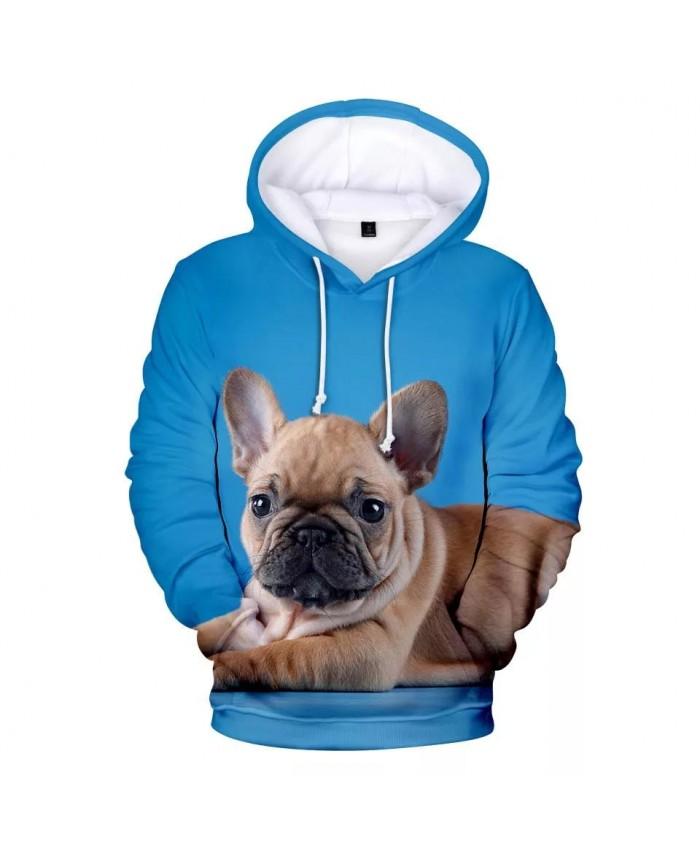 French Bulldog Hoodies Men women Fashion Print 3D Pullover French Bulldog Men's Hoodies Sweatshirt Harajuku Clothes