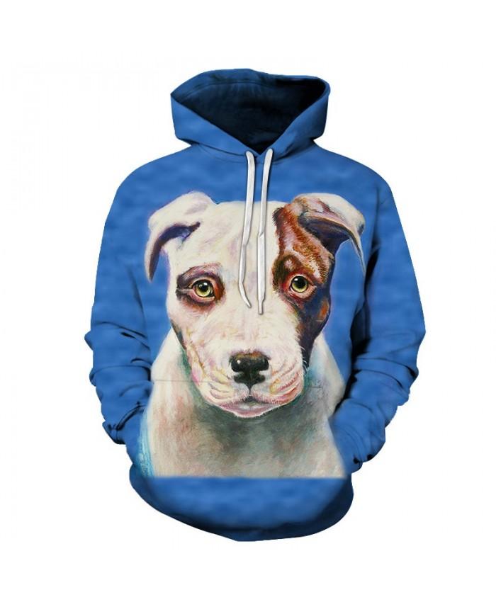 Funny Dog Sweatshirts Men Women Hoodies Fashion Tracksuits 3D Pullover Anime Hoody Boy Coat Streetwear 6xl Drop Ship