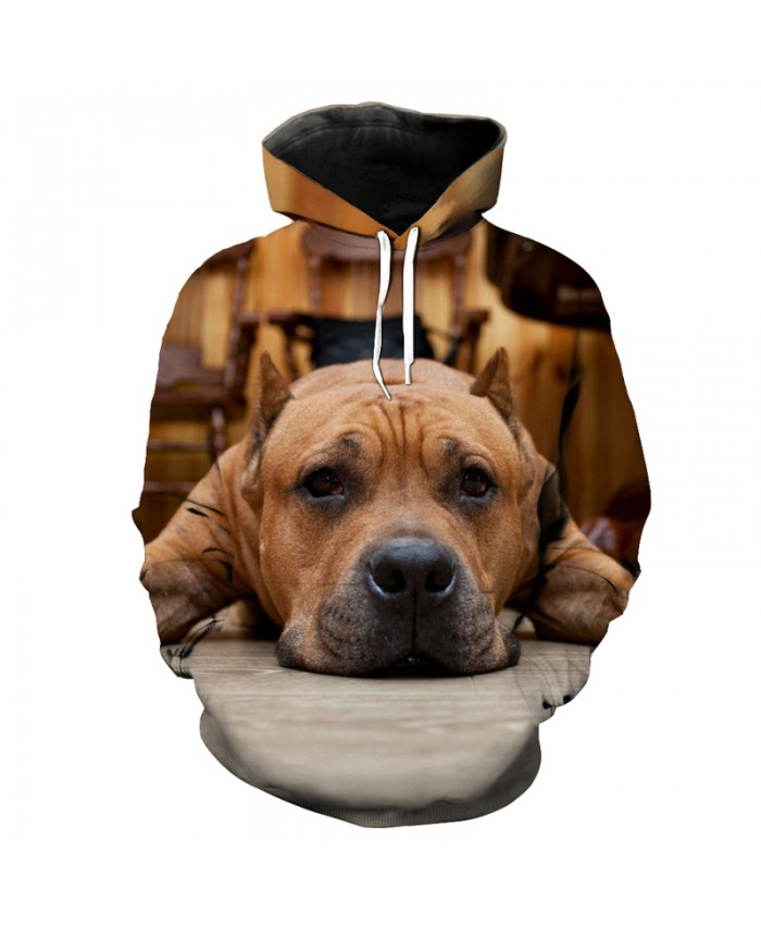 Melancholy Friend Retriever Dog Print Fashion Hooded Sweatshirt Men Women Sportwear