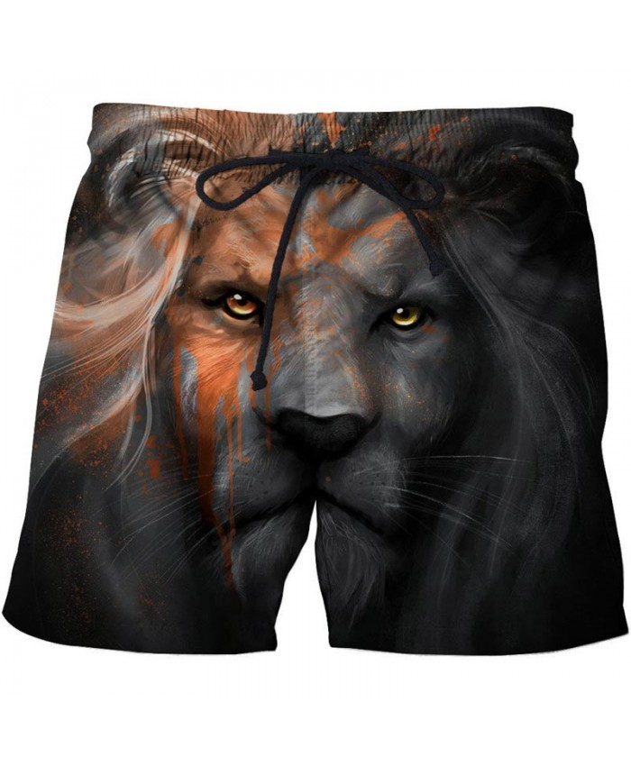 Sad Lion 3D Print Men Shorts Casual Cool 2019 New Elastic Waist Men Stone Printed Beach Shorts Male Fitness Shorts