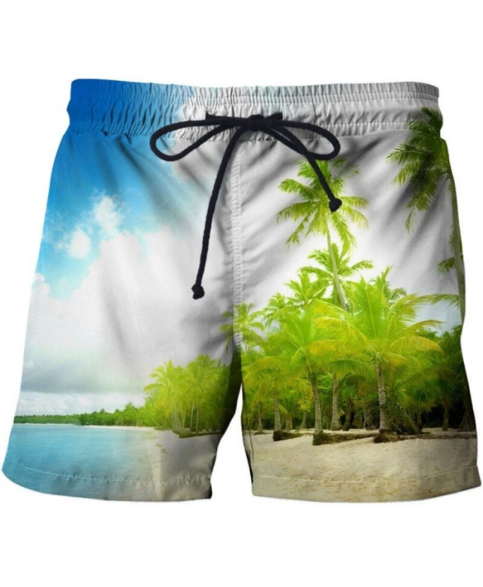 Seaside Men Beach Shorts 3D Print Men Shorts Casual Summer Cool Men Elastic Waist Male Fitness Shorts Drop Ship